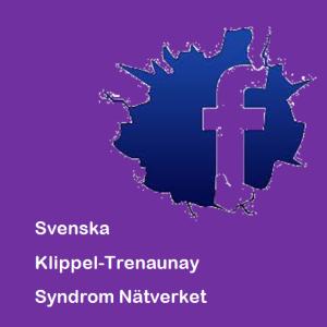 fb kt svenska